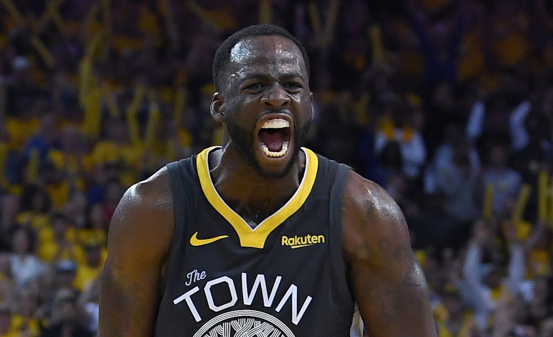Tom Tognoli Draymond Green